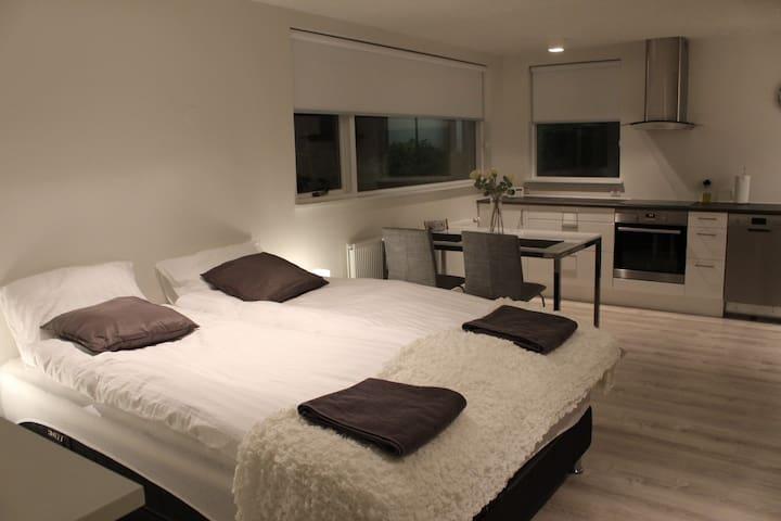 Luxury Private Studio apartment all new renovated
