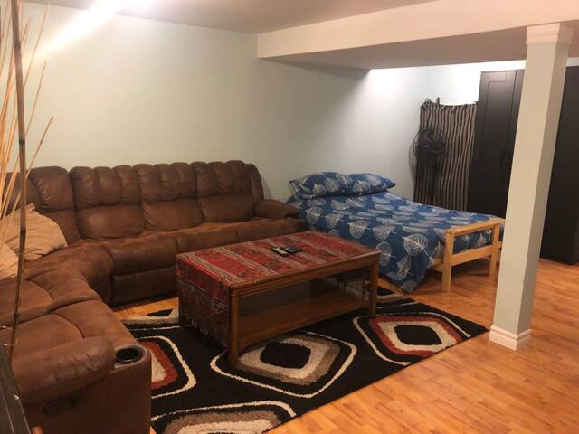 Large Central Kingston Basement Suite