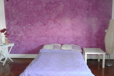 Camera ampia,luminosa, DIVANO LETTO - Sandigliano
