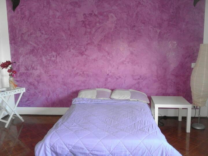 Camera ampia,luminosa, divano letto o letto singol