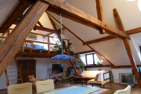 Exklusive & helle Wohnung + Garten - Roetgen