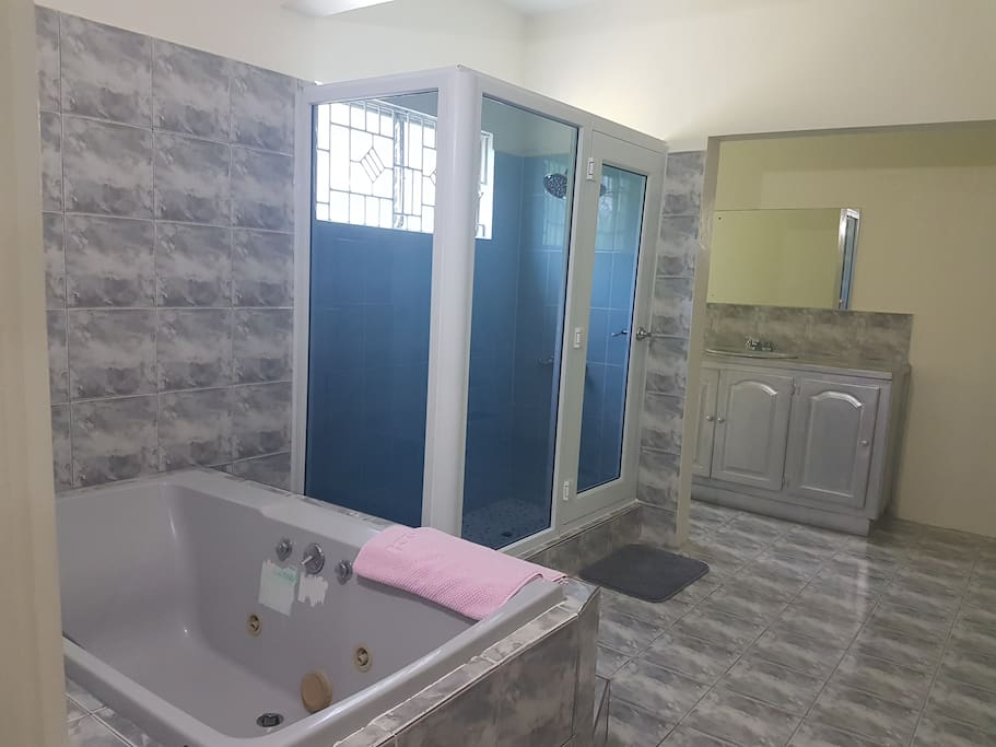 Master bath - jacuzzi and shower