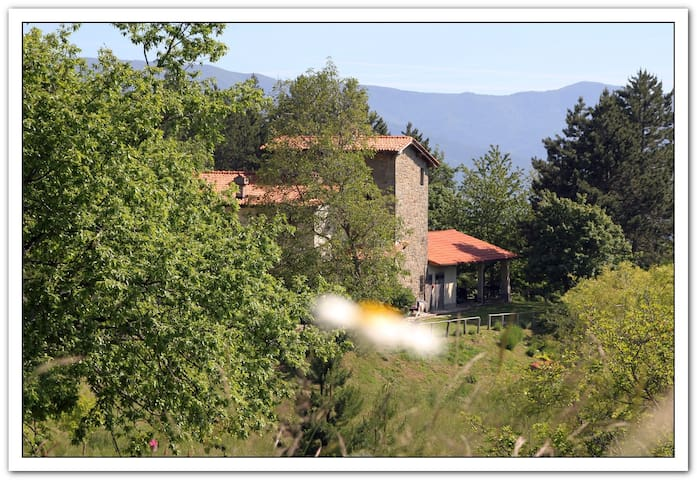 BB Casamonti - Giada - Campolombardo - Bed & Breakfast