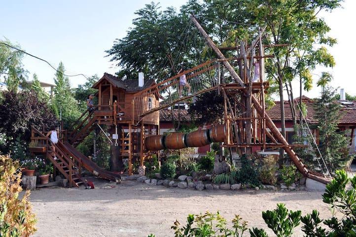 Casa del árbol complejo rural Las Cavas