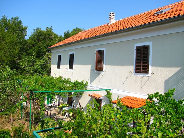 Great located Croatian style house - Drivenik