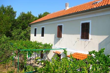 Great located Croatian style house - Drivenik - Dom