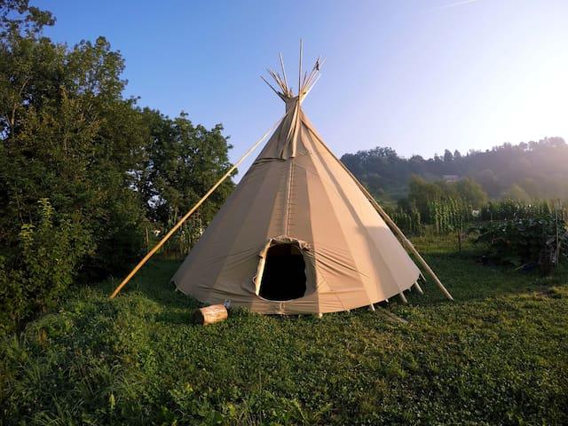 Slovenian Tipi - Radovljica
