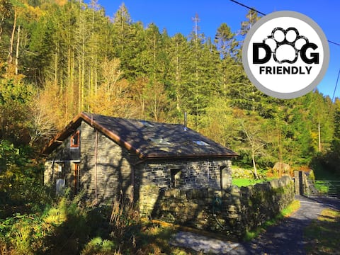 Fronwen Lodge- Ideal for Couples, Groups, Families