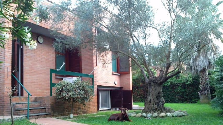 Bilocale nel verde a 700mt dal mare - Borgo Sabotino-foce Verde - Wohnung