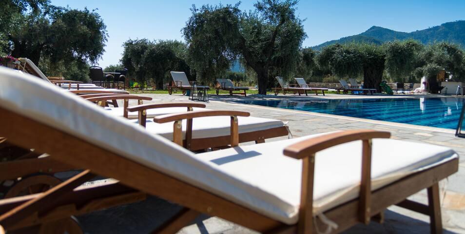 Ipsario Garden Hotel - Thasos - Bed & Breakfast