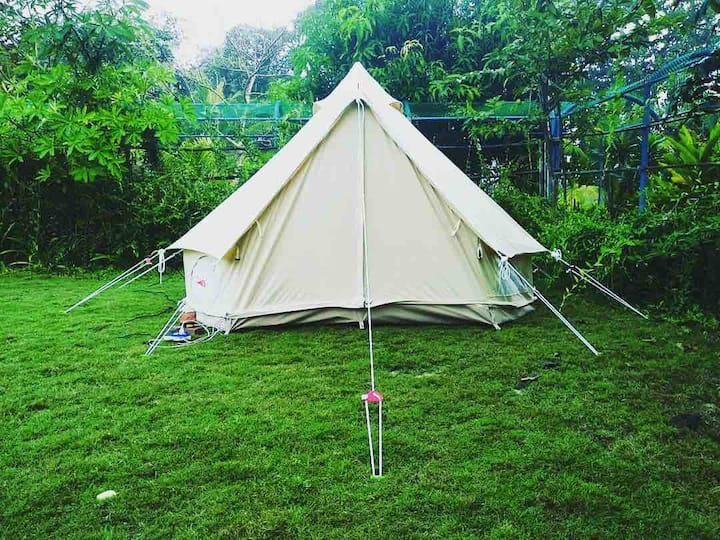 Camp/Tent at kisan Eco Farm under the stars