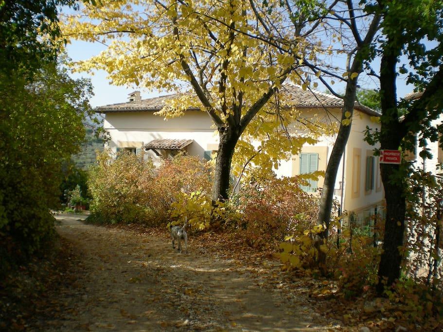 casa in autunno