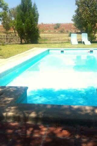 Jardín con piscina - Mairena del Aljarafe - Ev