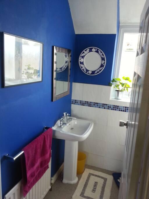 Bathroom (bath/shower are hidden behind the door)