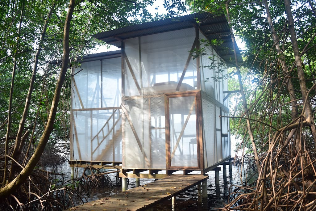 the mangrove treehouse  - transparent and breezy!