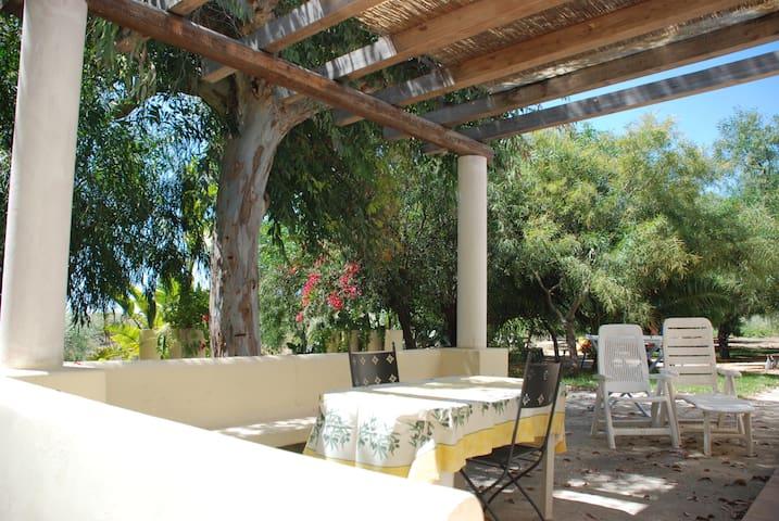 Appartamenti a 400 metri dal mare - Punta Milocca - Bed & Breakfast