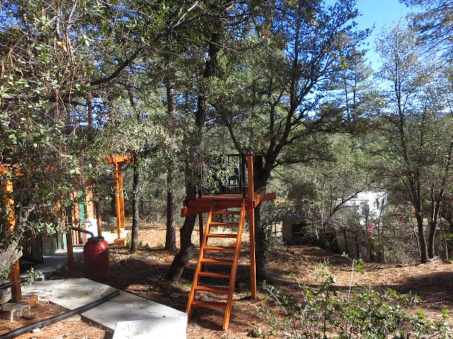 Enjoy our tree house
