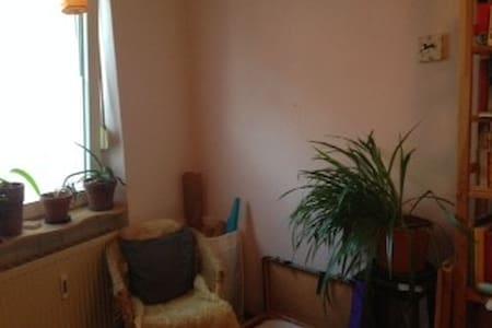 ruhige Altbauwohnung mit Garten - Apartment