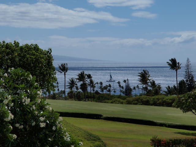 MAUI TWO STORY, OCEAN VIEW