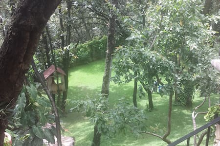 Room in the forest 10 min. out GDL - Zapopan, Pinar de la Venta