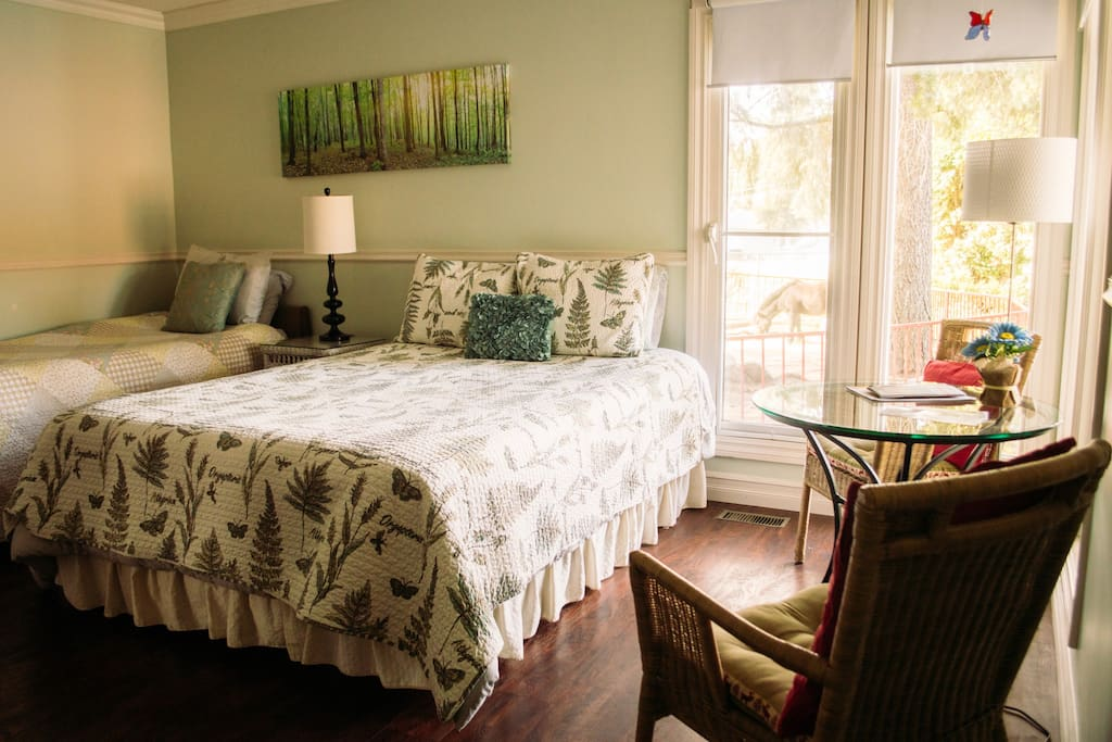Suite bedroom overlooking the miniature horse paddock