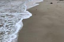 Hooper's Beach