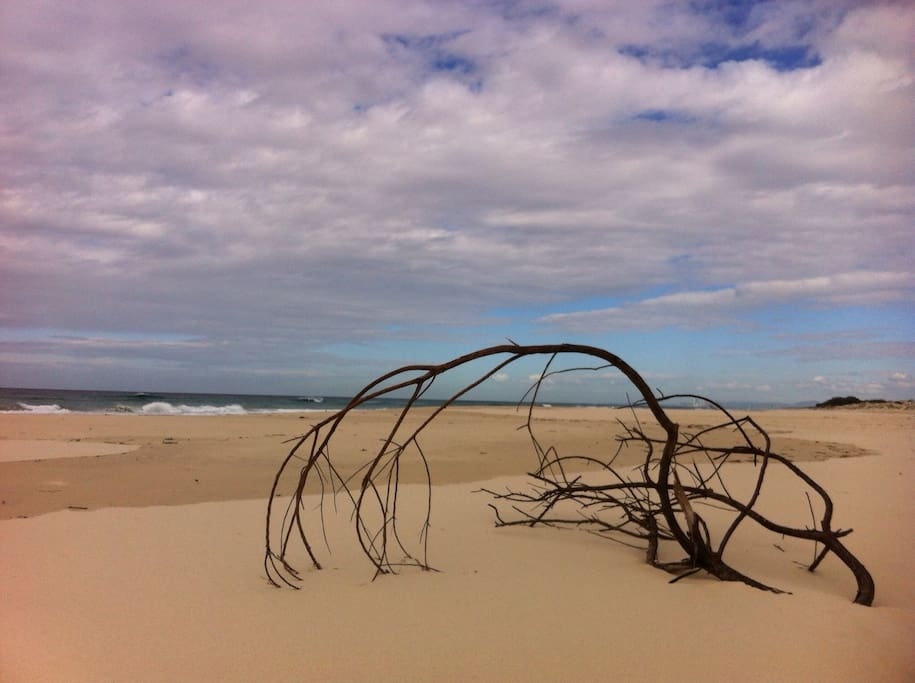 Natures own sculpture.