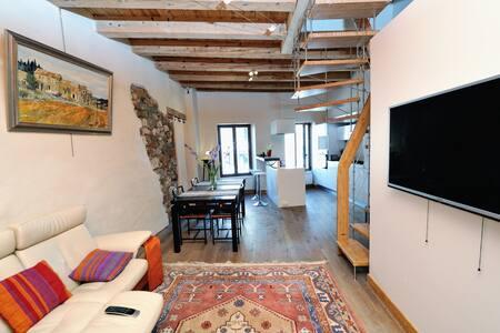 TAKE ME HOME LE LIBELLULE  LOFT vieille ville - Annecy - Loft