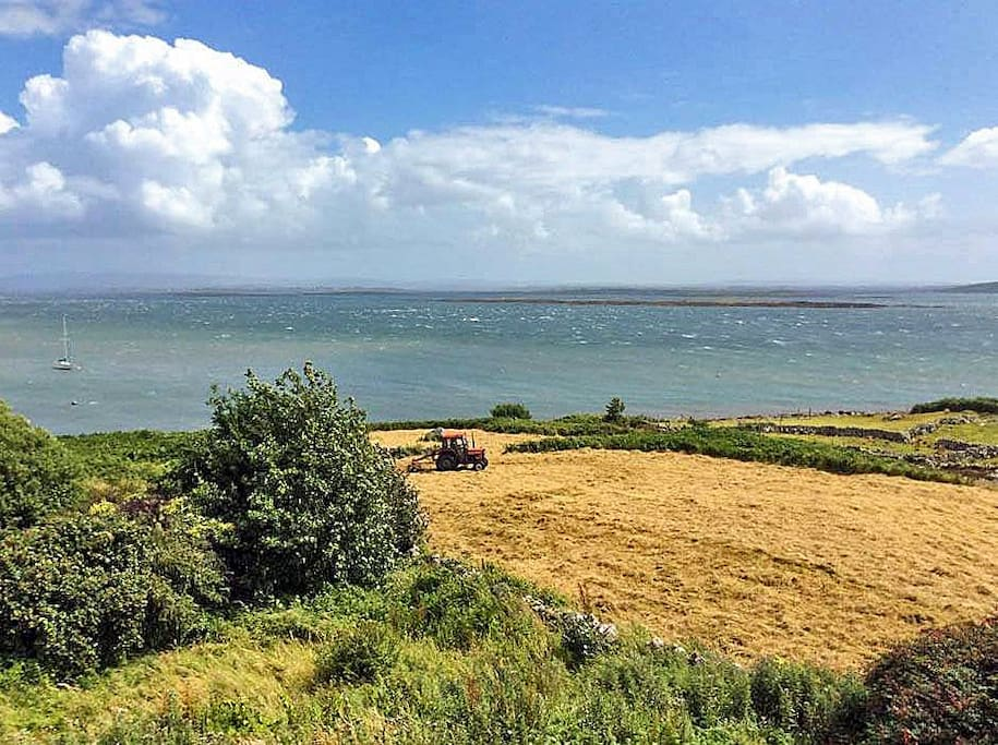 Stunning coastal scenery to admire from the garden