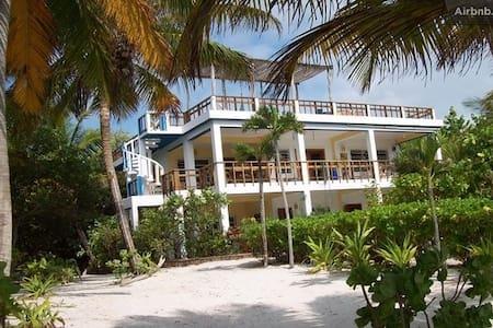 Blue Wave Villa, Belize - Room #3  - サンペドロ - 別荘