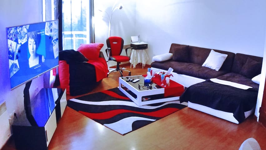 Nice Flat 20 min from Paris (55 M²) - Argenteuil - อพาร์ทเมนท์