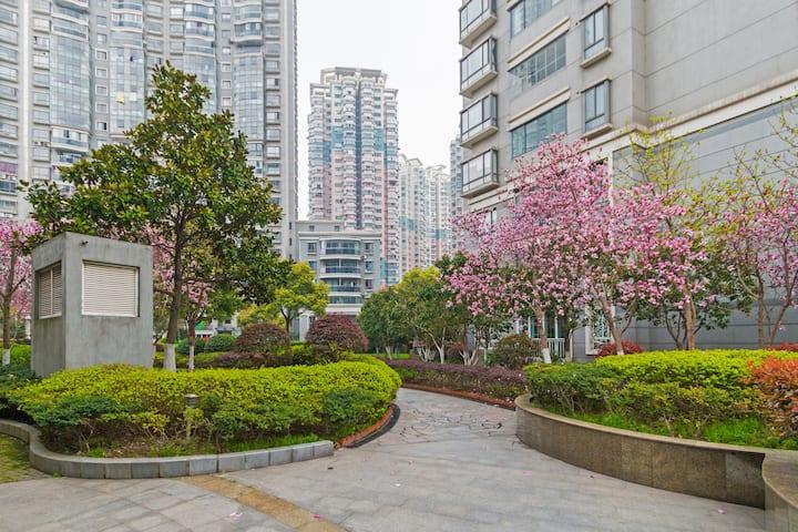 在花园里体会小资、品质生活和爱,用最近的距离以及最少的时间看遍上海的发展,北外滩豪华地段