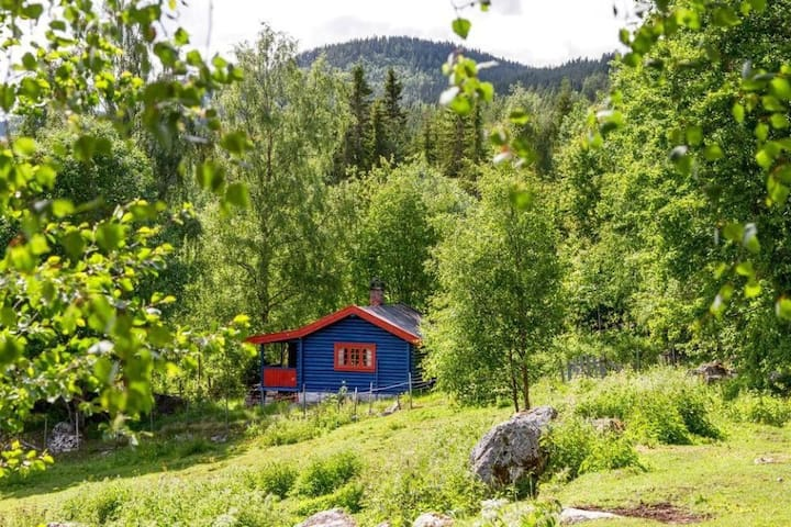 Historie hytten - Nesbyen - Stuga