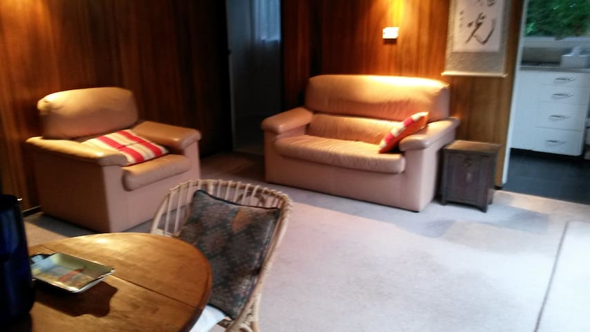Comfortable leather furniture in the lounge