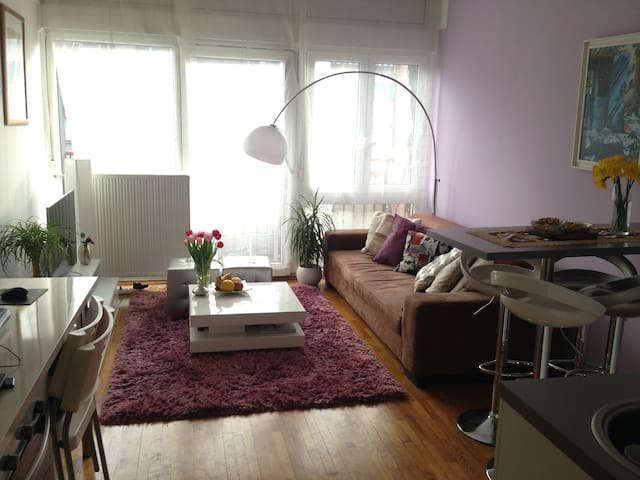 Center of Zagreb-charming 35m2 app - Zagreb - Apartamento