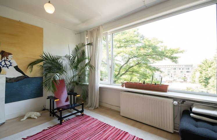 sunny spacious quiet apartment