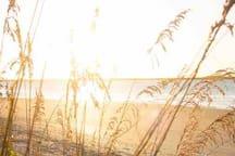 Adorable Beachfront Condo