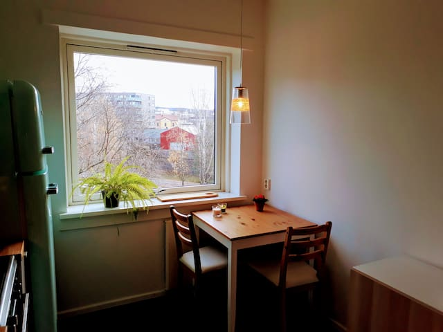 Light and cozy top-level flat in Oslo Lille Tøyen.