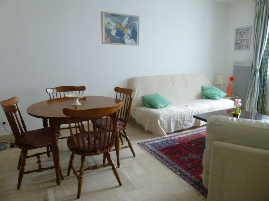 salon -séjour 30 m2