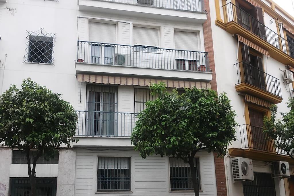 Piso en el centro de sevilla houses for rent in sevilla andaluc a spain - Pisos en el centro de sevilla ...