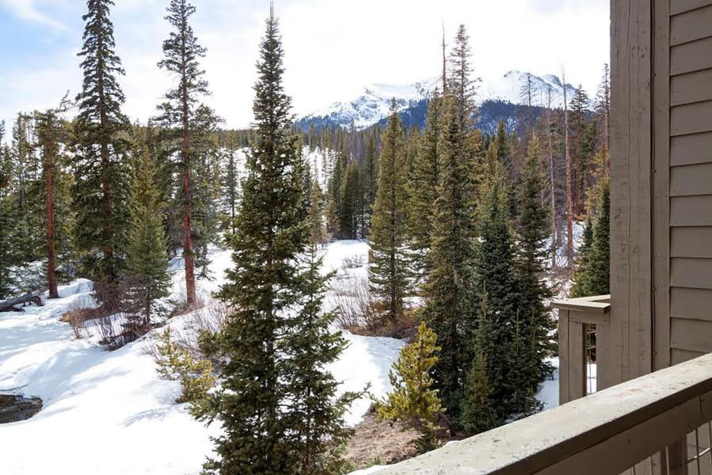 Soak up views of the pines and mountains from a private balcony.