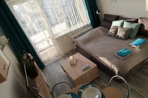 Cozy Studio Apartment in City Center