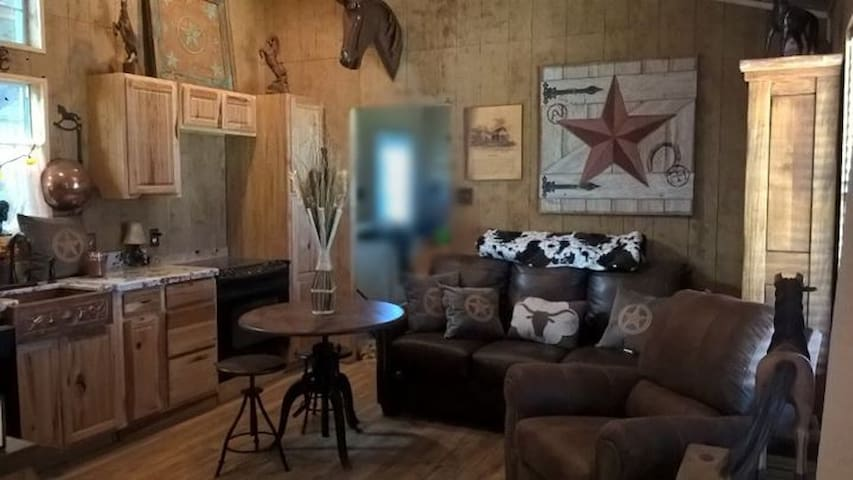 Texas-style livingroom with high open ceilings. Pullout couch