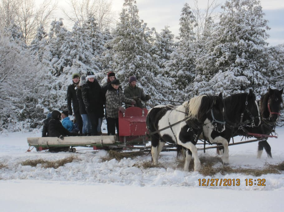 Alternative transportation to the cabin in the winter