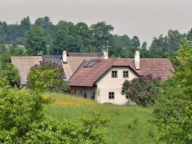 Wald-Land-Hof - Niederneustift - Casa