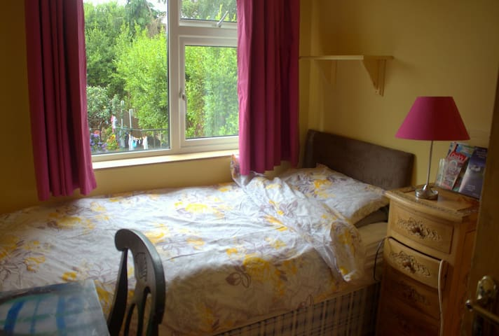 Sunny Single Bedroom - Cork