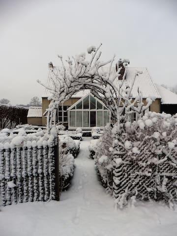 De tuin in een winters decor