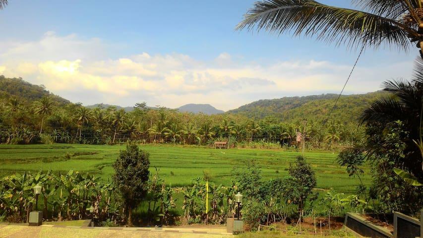 LIFE IS MORE THAN LIVE - Jawa Tengah, ID - Haus