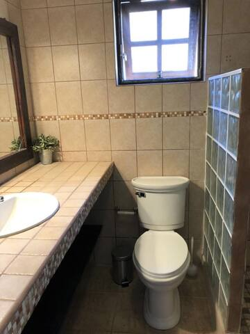 Masterbathroom (ensuite with the masterbedroom) with sink, large mirror, toilet and rainshower
