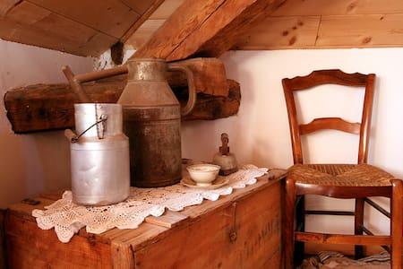 chambre d'hôtes les chanterelles - Seyne - Bed & Breakfast